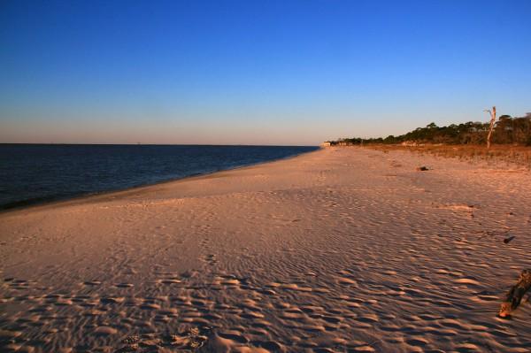 IMG_6469 Beach Dauphin Is