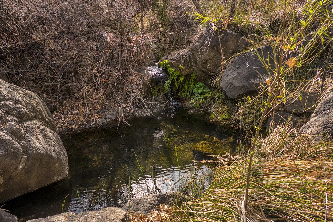 P1100839 madrid falls spring