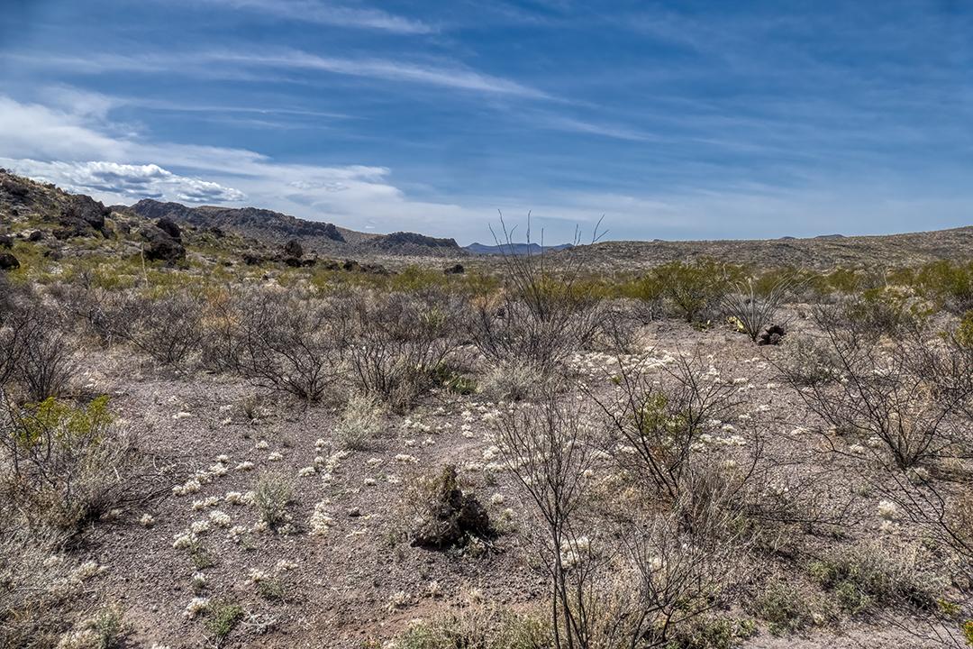 P1100882 trail cairn