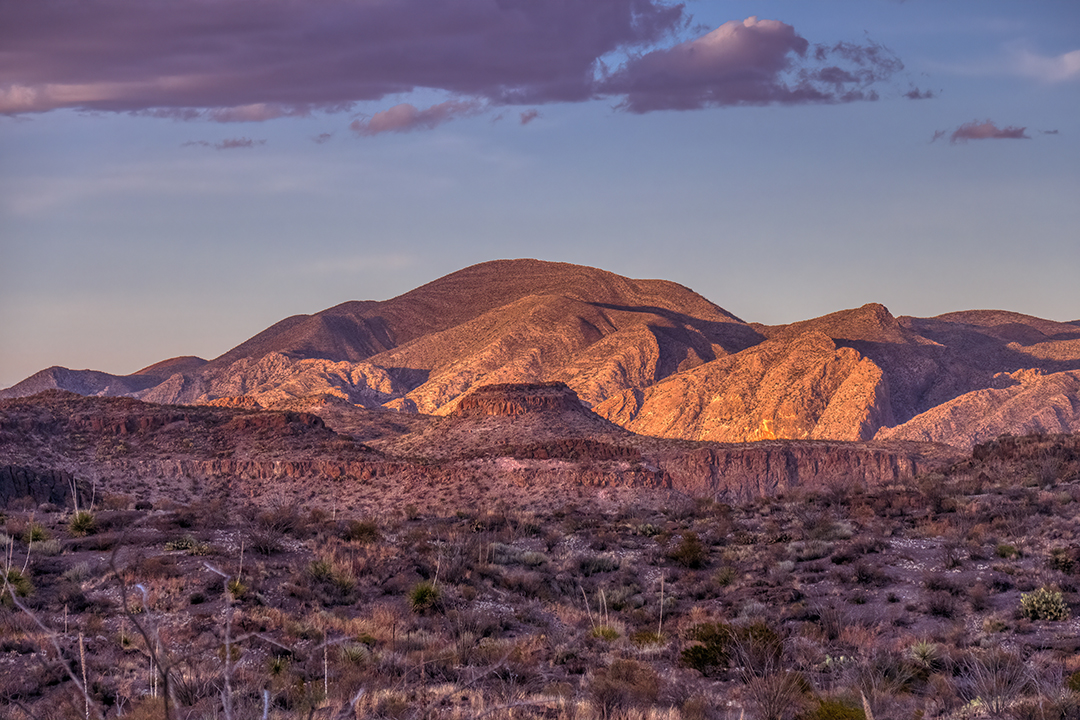 P1100963 desert sunset