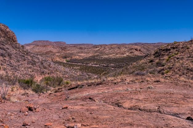 P1110144 trail